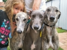 Lanah and 3 Greys
