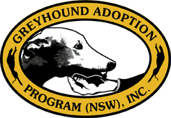 Greyhound Adoption Program NSW Inc
